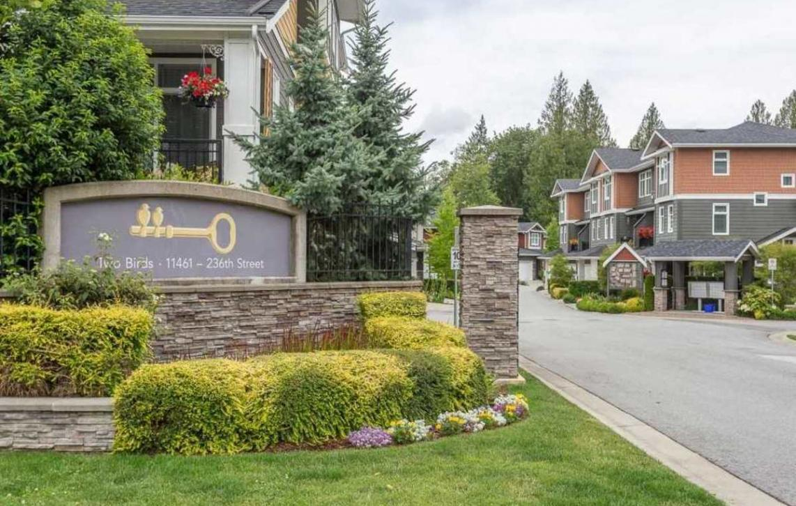 16 - 11461 236 Street, Cottonwood MR, Maple Ridge