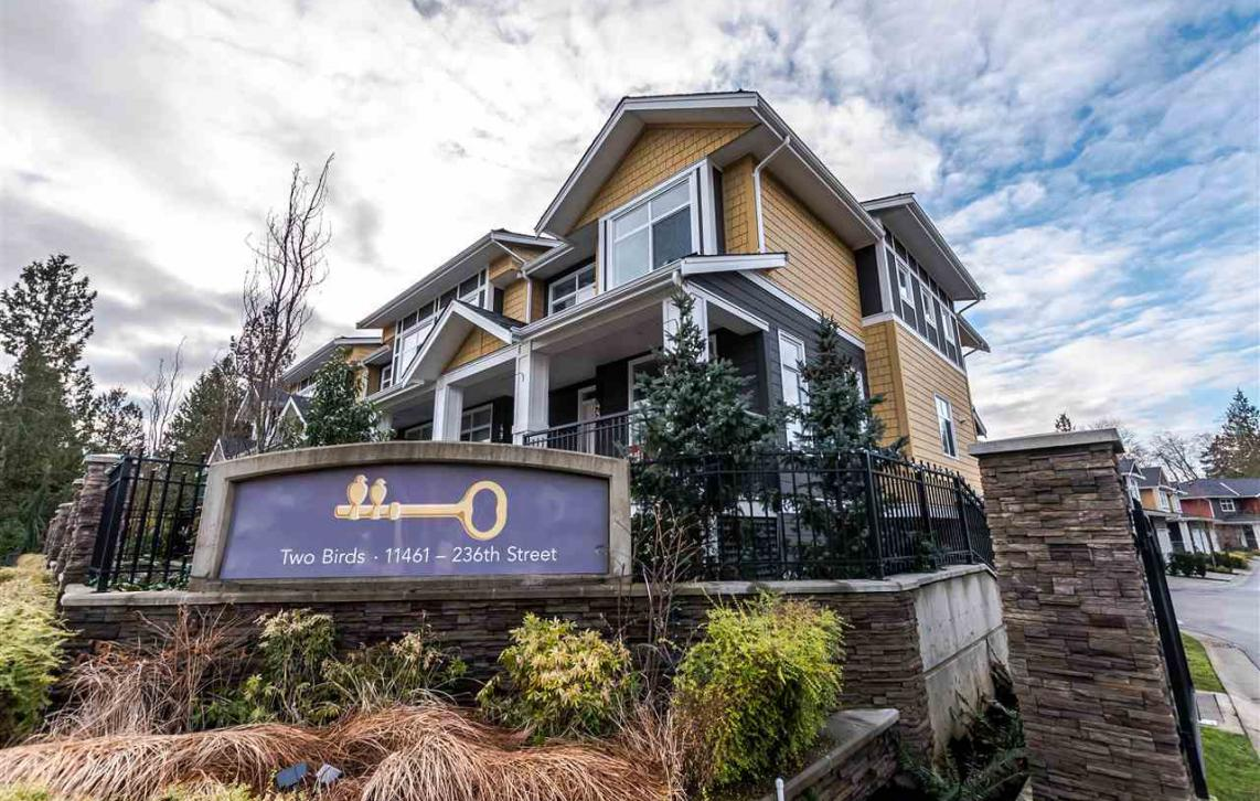 48 - 11461 236, Cottonwood MR, Maple Ridge